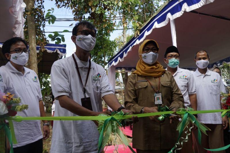 PLN bangun sekolah berwawasan lingkungan Eco School Nusantara di Lombok Tengah
