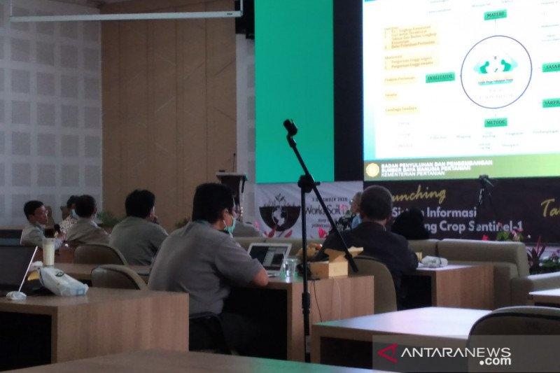 Kementan luncurkan SISCrop 1.0 guna monitoring tanaman padi