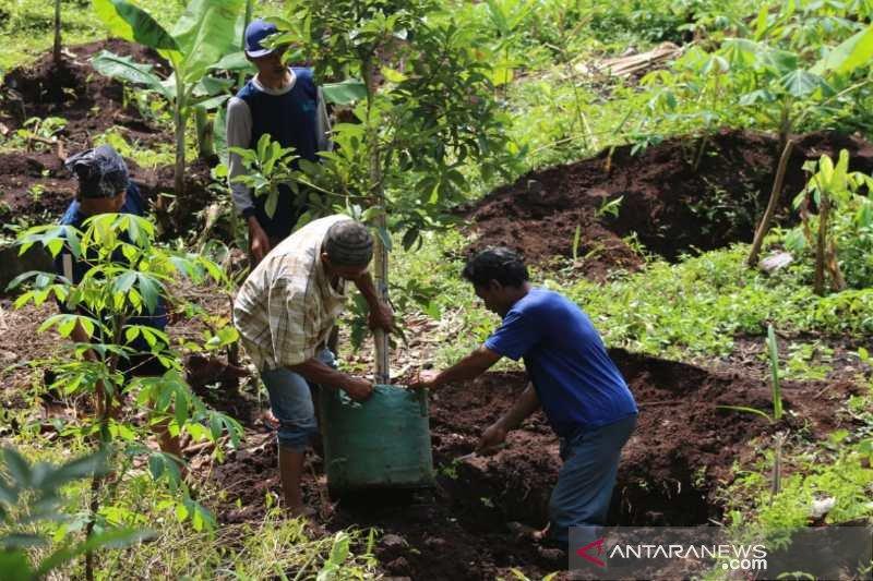 Ratusan santri di Temanggung giatkan gerakan menanam pohon