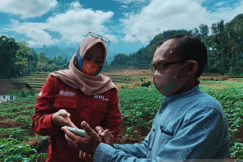 "BNI uji coba ""smart farming"" pada lima provinsi"