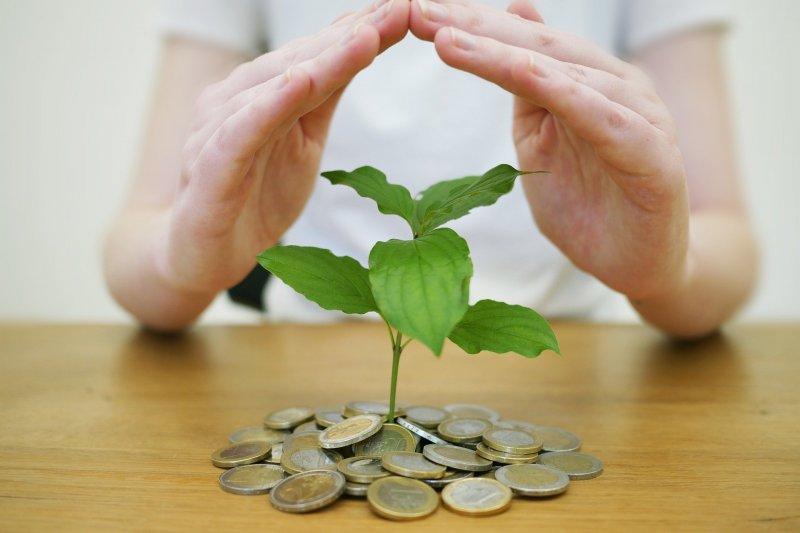 Ingin investasi atau berbisnis, jangan  takut memulai
