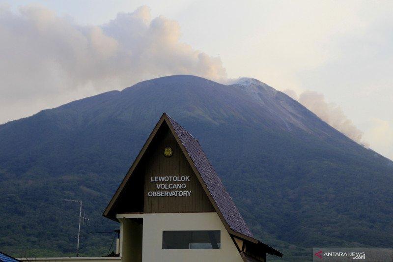 PVBMG sebut Gunung Lewotolok masih terus erupsi