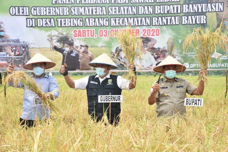 Sumatera Selatan targetkan jadi ikon pangan nasional