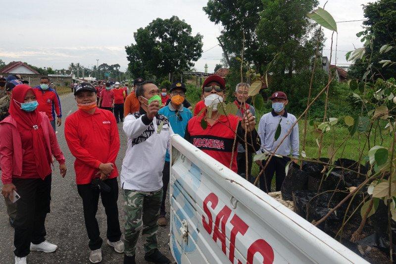 Bupati Lampung Tengah tanam pohon mahoni untuk menjaga ketersediaan air