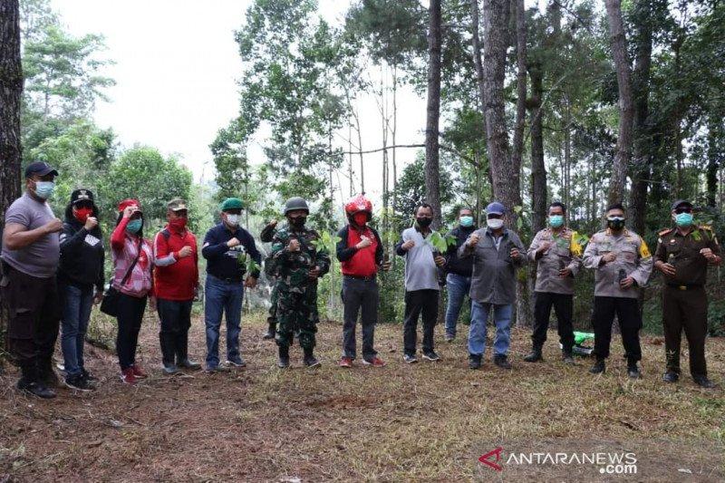 Pemkab Minahasa menanam pohon di hutan Papakelan antisipasi banjir