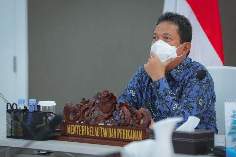 Menteri Kelautan targetkan Indonesia jadi produsen udang  vaname terbesar