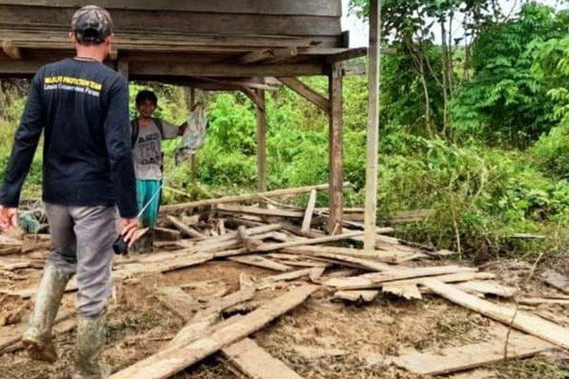 Kawanan gajah liar rusak perkebunan warga