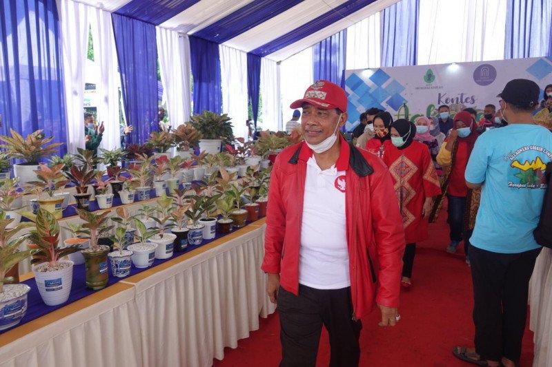 Lampung Tengah gelar kontes tanaman hias Aglonema