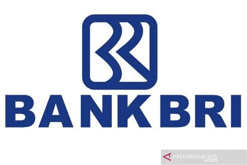 Dirut BRI buka peluang jadikan anak usahanya BRI Agro sebagai bank digital