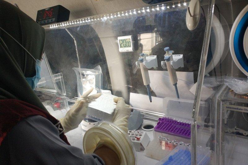 Pemprov Sulbar prioritaskan tes cepat antigen bagi pengungsi bergejala klinis