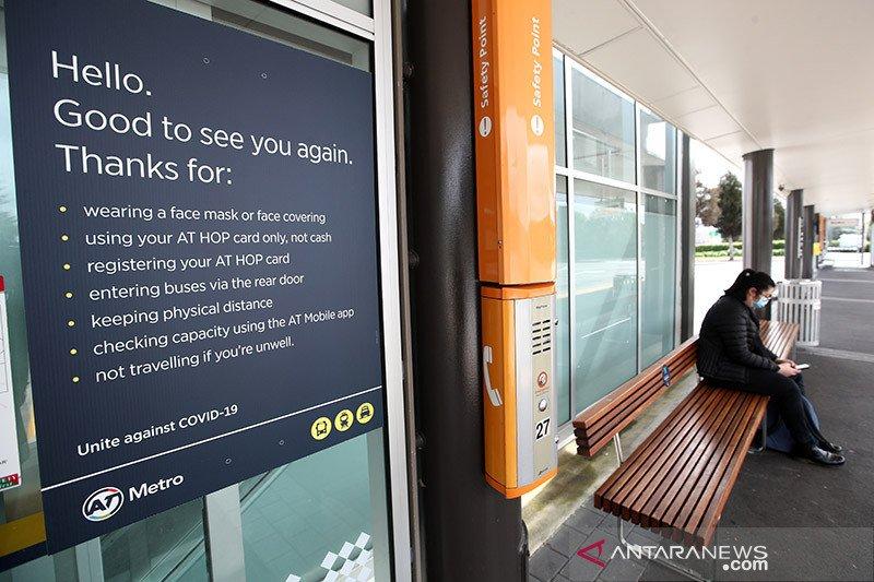 Para vaksinator Selandia Baru disuntik sebelum program massal dimulai