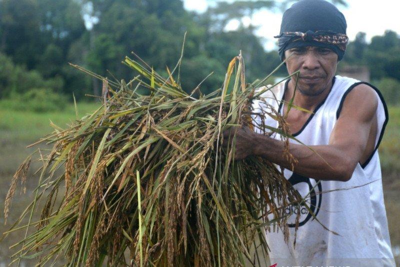 Asa entaskan banjir Sembakung, masalah satu sungai dari dua negara