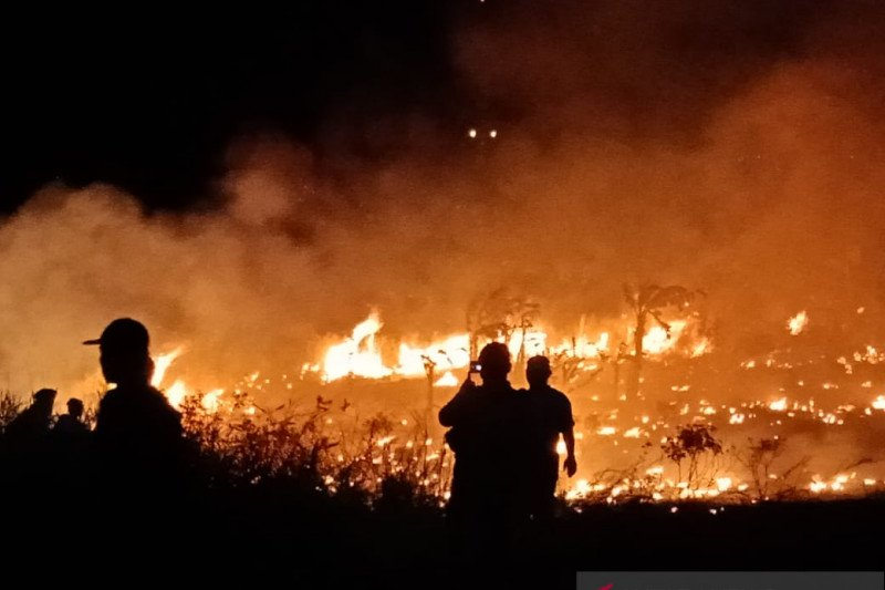 Baru 25 hari tahun 2021 ada 81 bencana terjadi di Kabupaten Natuna