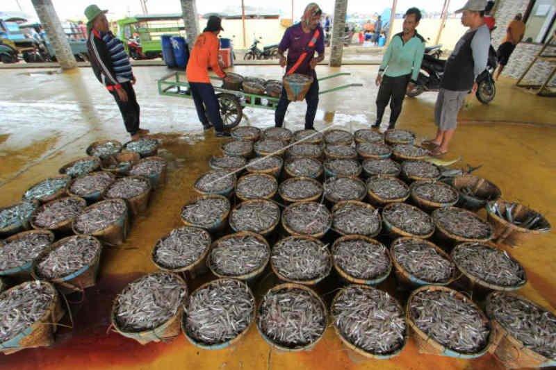 Harga ikan di Indramayu kembali naik