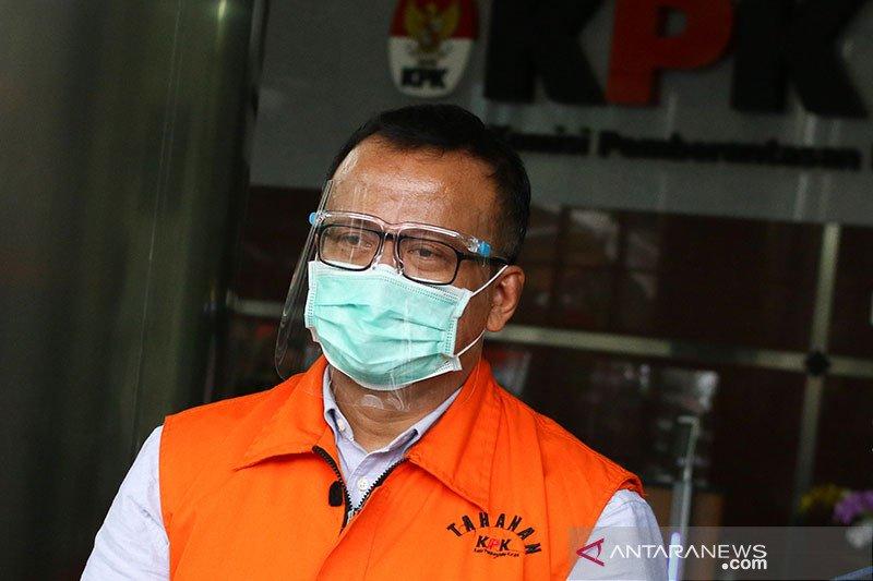 KPK panggil lima saksi kasus suap izin ekspor  benih lobster