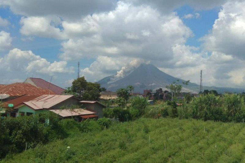 Sinabung luncurkan awan panas guguran sejauh 2.500 meter