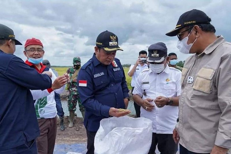 Kabupaten Banyuasin dorong peningkatan produktivitas  pertanian
