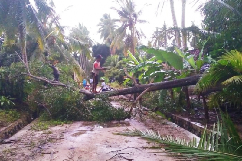 Antisipasi penyebaran COVID-19 di tengah bencana puting beliung, BPBD Lampung Timur tekankan prokes