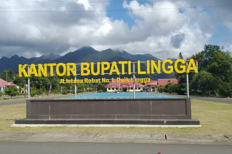 Masa jabatan Bupati Lingga berakhir bersamaan dengan putusan MK