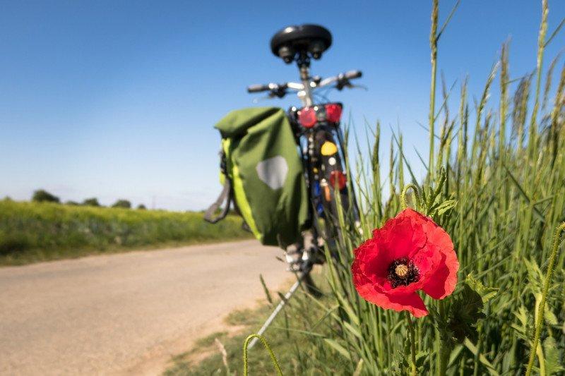 Belajar cara tepat bersepeda bagi kesehatan jantung lewat buku saku