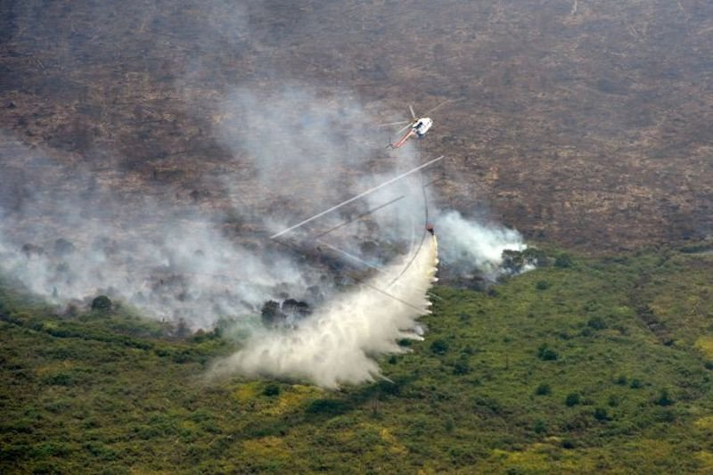 Pemprov Sumsel minta solusi terkait lahan tak produktif  rawan terbakar