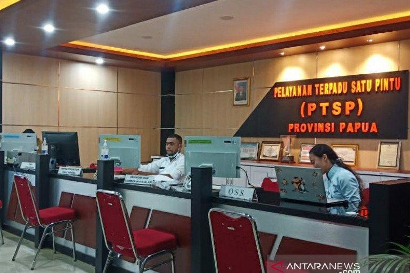 Investasi penanaman modal asing di Papua meningkat 30 persen
