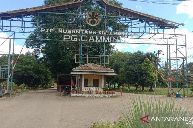 PTPN XIV berupaya pertahankan aset negara di Kabupaten Bone