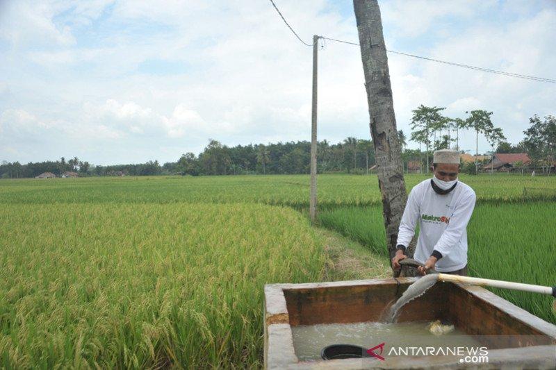 Program listrik masuk sawah di Martapura OKUT