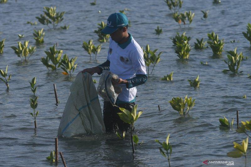 KKP siapkan pusat daur ulang sampah di wilayah  pulau-pulau kecil