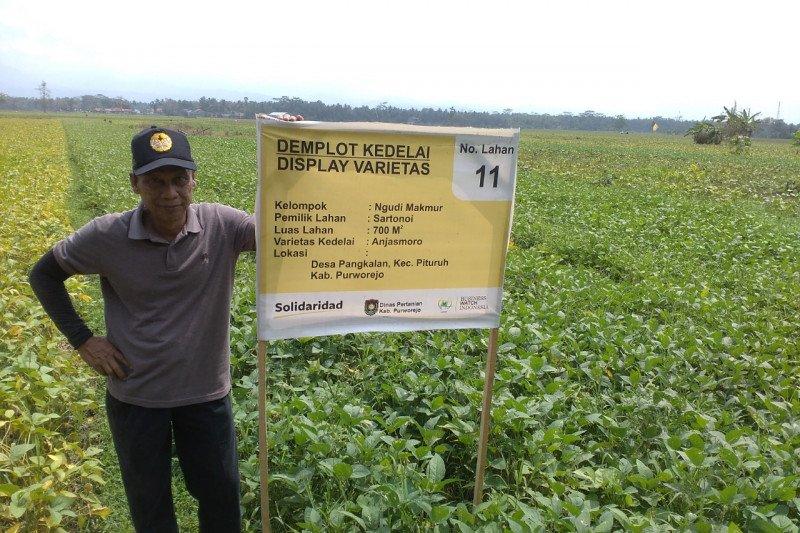 Akademisi sebut petani bisa mulai siapkan benih kedelai saat pancaroba