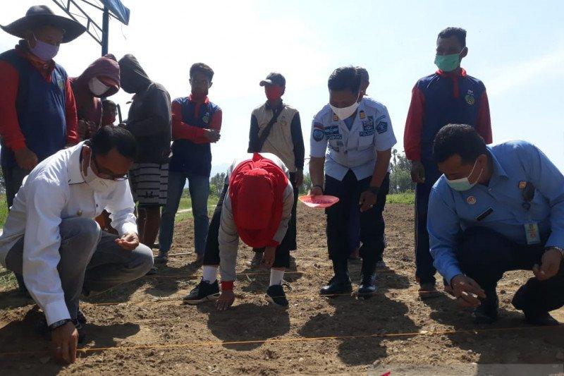 Lapas Palu dan Pemprov Sulteng berdayakan warga binaan untuk bertani