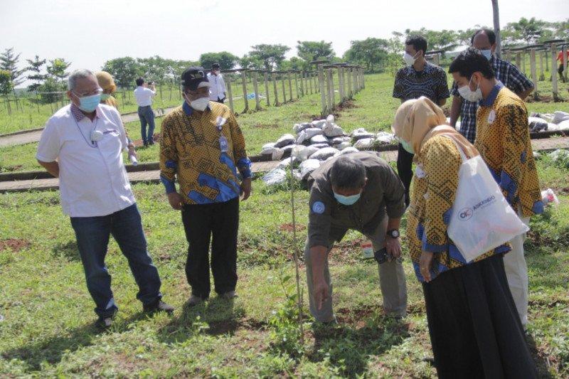 Kementan komitmen dukung pembangunan kebun buah di Itera