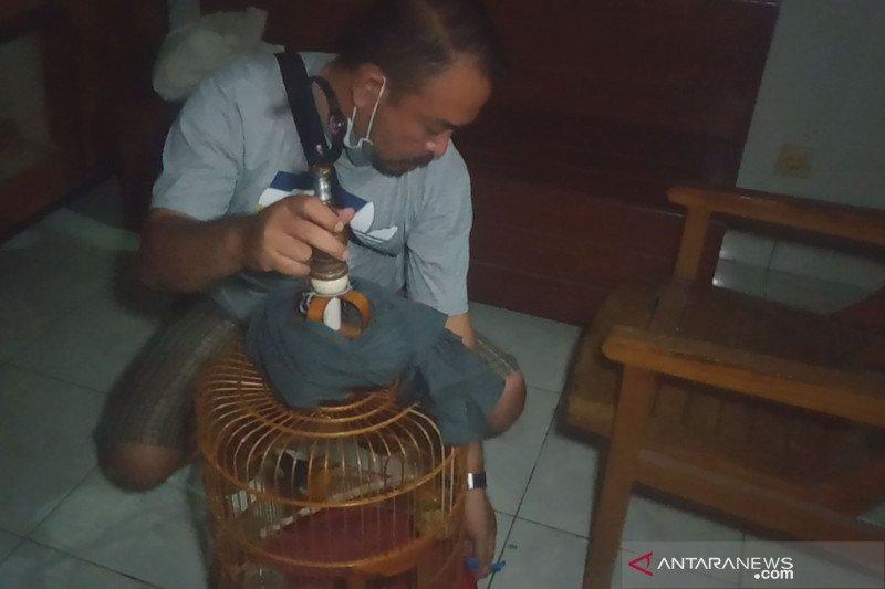 Pengedar di Kota Mataram ini sembunyikan sabu di sangkar burung