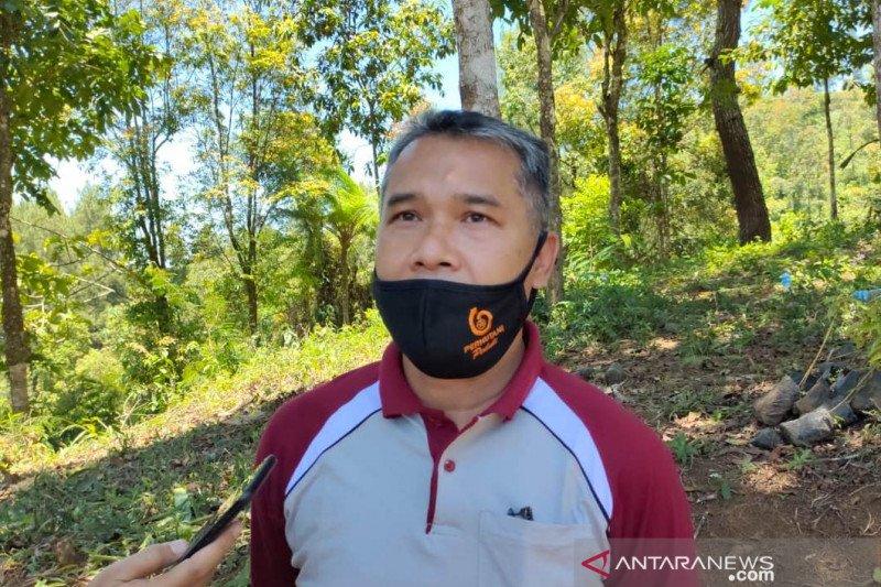 Hutan lindung Cianjur dalam kondisi kritis, sebut Perhutani