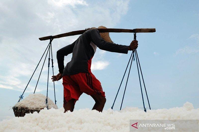 Memaksimalkan penyerapan garam hasil produksi petambak negeri ini