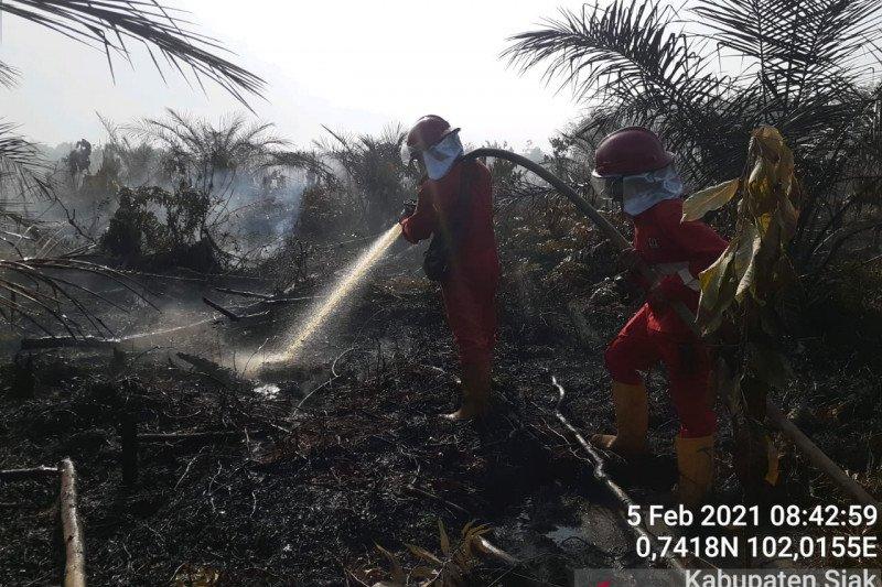 Memenjarakan pembakar hutan  dan lahan