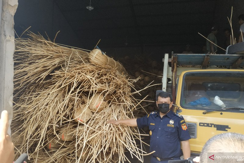 Bea Cukai gagalkan penyelundupan 100 ton rotan ilegal di Kalimantan Barat