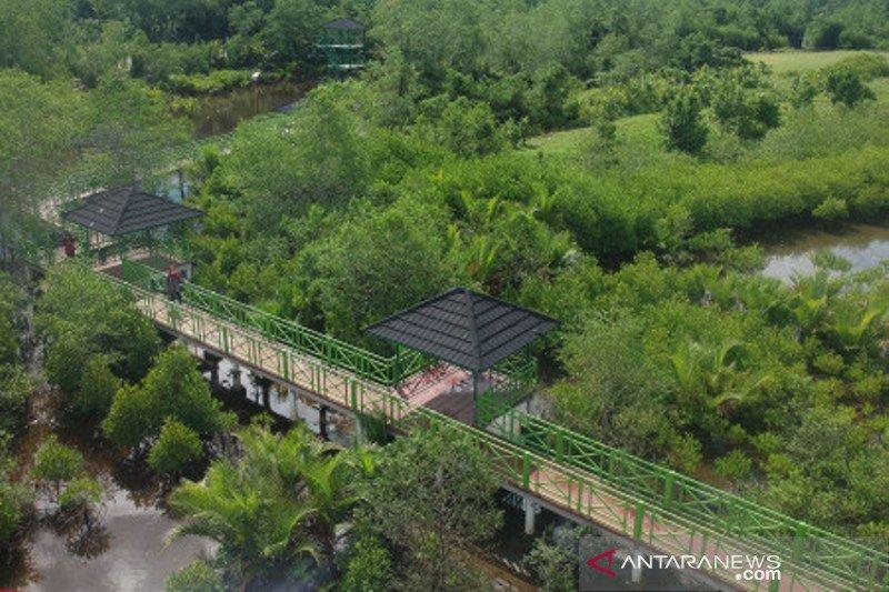 Treking Mangrove Apar Pariaman