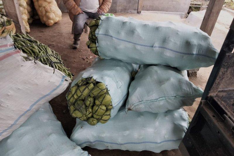 Pedagang pengepul buang sayuran yang tak laku Lambar
