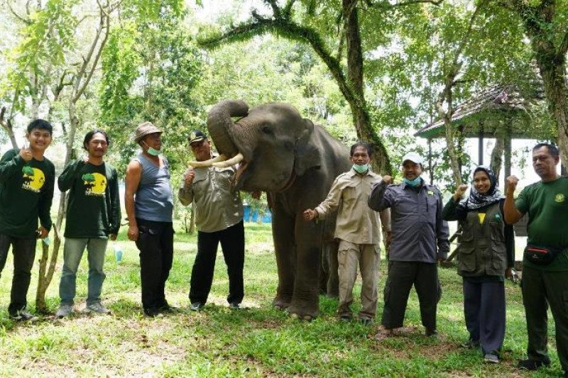 Komipo Indonesia collaborates with the RuKo to distribute aid to PKG Way Kambas