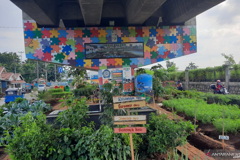 """Urban Farming"" tak sekadar memanfaatkan lahan kosong, lingkungan pun lebih indah bersih"