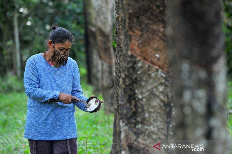 Musi Banyuasin bentuk rumah perlindungan  pekerja perempuan