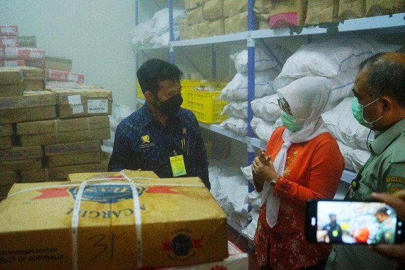 Mentan pastikan ketersediaan 11 pangan nasional jelang puasa dalam kondisi aman