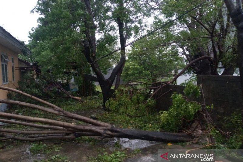 Di Rote Ndao,  ribuan rumah rusak akibat badai siklon tropis