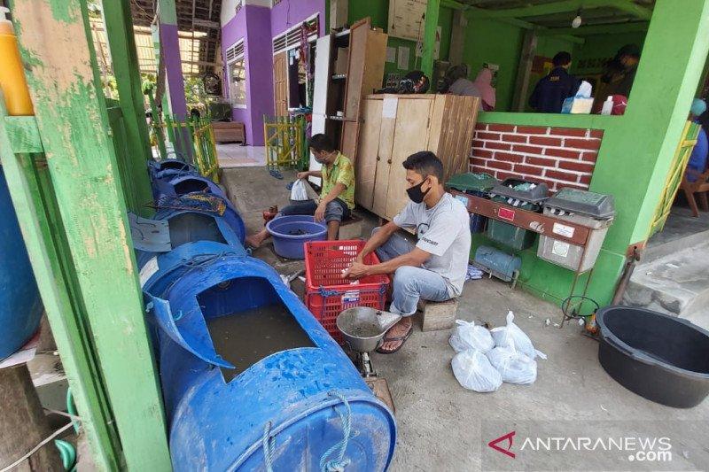 """Pemkab Kulon Progo galakkan """"Gemarikan"""" tingkatkan konsumsi ikan"""