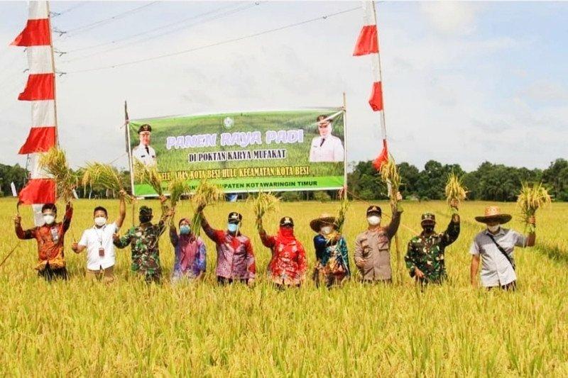 Pemkab Kotim wacanakan beli beras lokal saat harga rendah