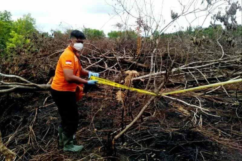 DPRD Palangka Raya: Penanganan karhutla perlu tindakan hukum tegas