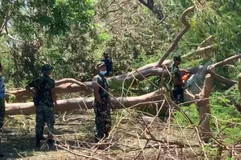 TNI-Polri bantu PLN pulihkan kelistrikan di Kota Kupang NTT