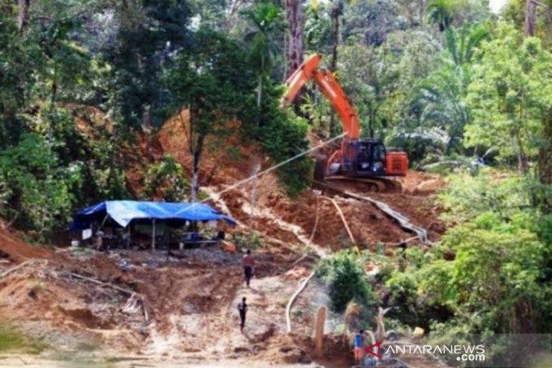 Walhi: Penambangan emas ilegal dibiarkan aparat
