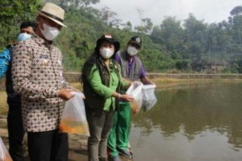 Pemkab Gunung Kidul mengintensifkan tebar benih di puluhan telaga